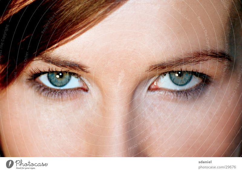 green eye catcher Mensch Gesicht Auge Genauigkeit Präzision
