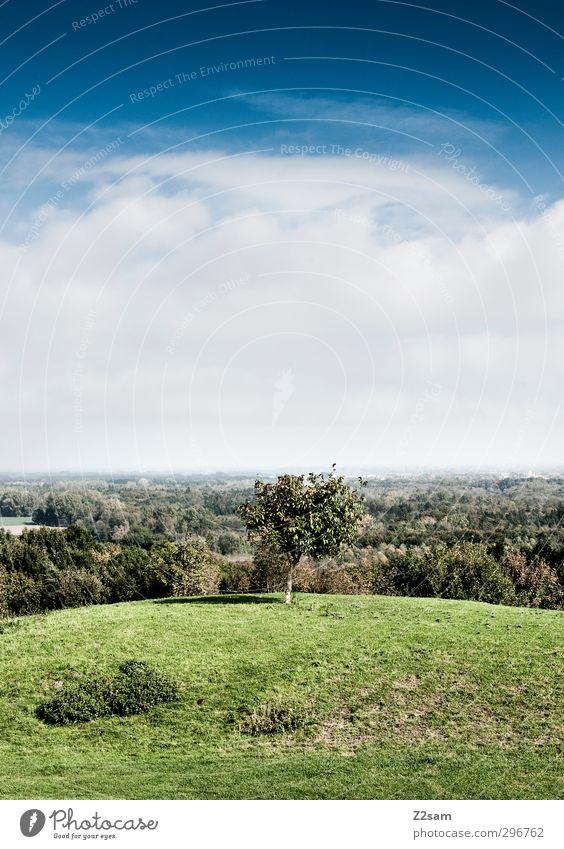 gute aussichten Himmel Natur grün Stadt Sommer Baum Einsamkeit Landschaft Wolken ruhig Erholung Wald Umwelt Ferne Wiese Horizont