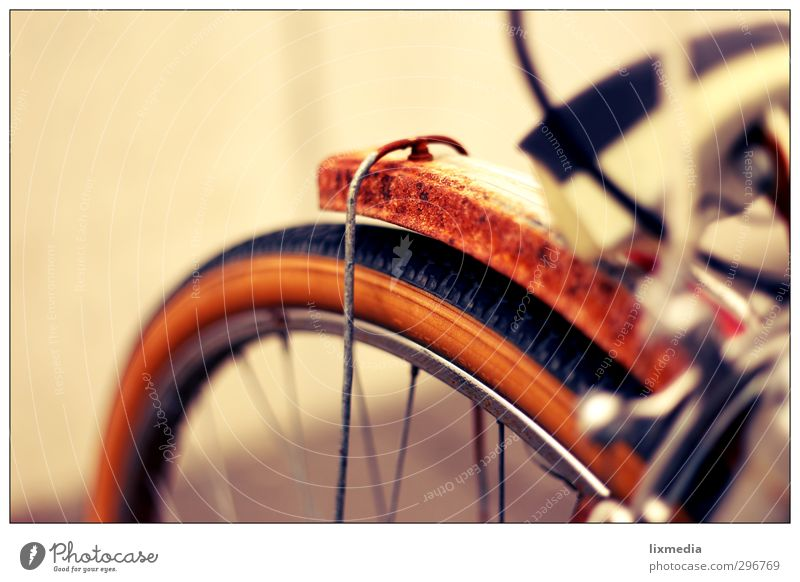 Rost-Rad II Freizeit & Hobby Ferien & Urlaub & Reisen alt braun Fahrrad Farbfoto Außenaufnahme Textfreiraum oben Kontrast Unschärfe Starke Tiefenschärfe