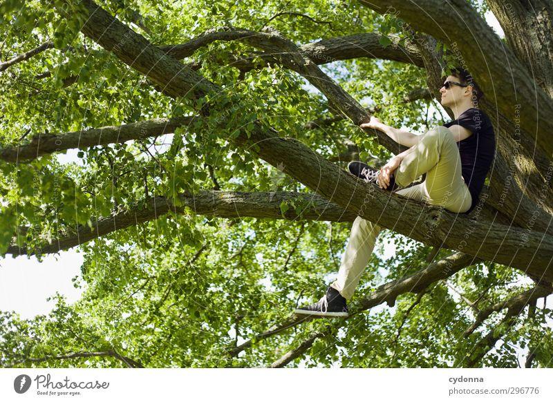 Waiting Lifestyle Stil Gesundheit Leben Wohlgefühl Erholung ruhig Mensch Junger Mann Jugendliche 18-30 Jahre Erwachsene Umwelt Natur Frühling Sommer Baum