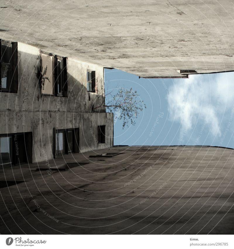 hochzervikale Extension | kopflastig Himmel Wolken Schönes Wetter Baum Altstadt Menschenleer Haus Architektur Altbau Mauer Wand Fassade Fenster alt dunkel
