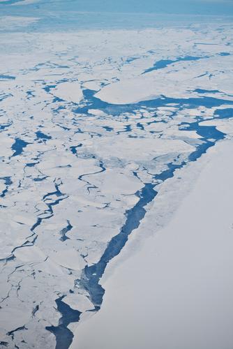Eisbruch Natur schön Wasser weiß Meer Einsamkeit Landschaft Winter kalt Schnee Küste Klima ästhetisch Urelemente Frost