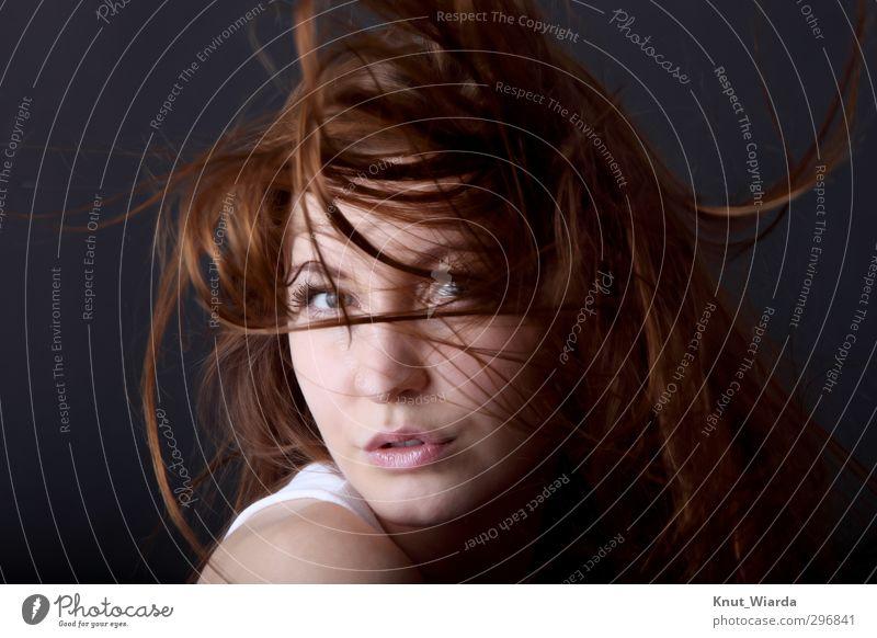 young woman with wild hair schön Haare & Frisuren Gesicht feminin Junge Frau Jugendliche Erwachsene Kopf Auge Mund 1 Mensch 18-30 Jahre brünett langhaarig Blick