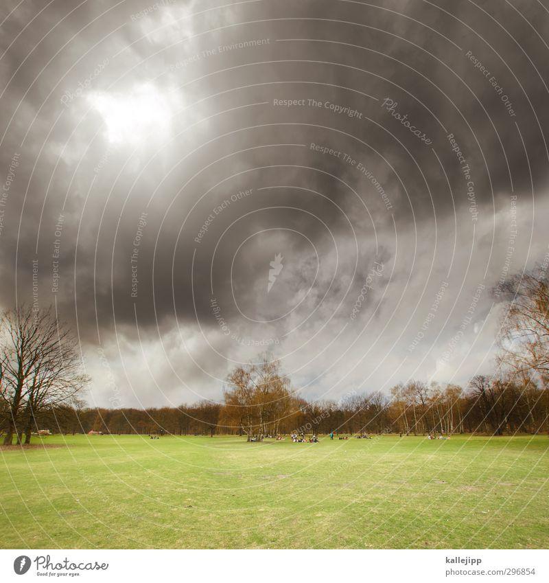 parklücke Mensch Menschengruppe Umwelt Natur Landschaft Wolken Gewitterwolken Frühling Baum Gras Park Wiese bedrohlich grau grün Tiergarten Rasen Farbfoto