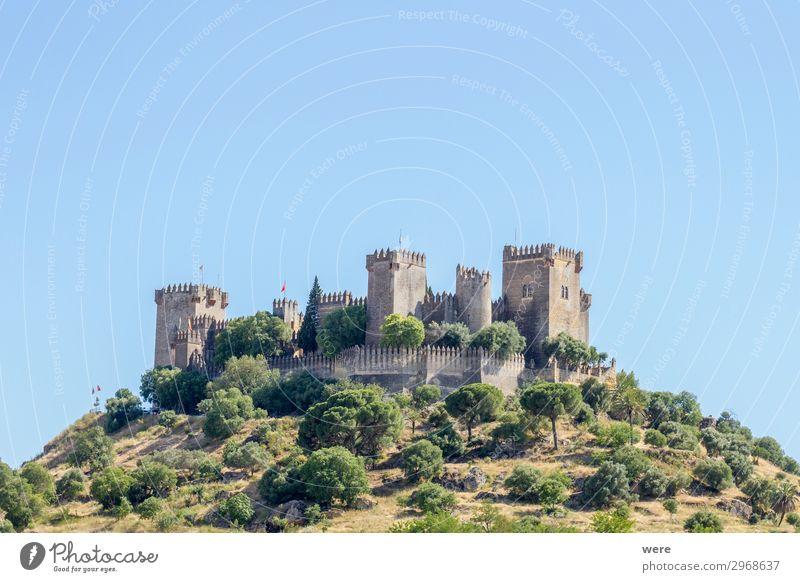 View of the medieval castle Almodovar del Rio Burg oder Schloss Bauwerk Sehenswürdigkeit alt historisch Almodoyar del Rio Andalucia Cordoba Fortress Holiday