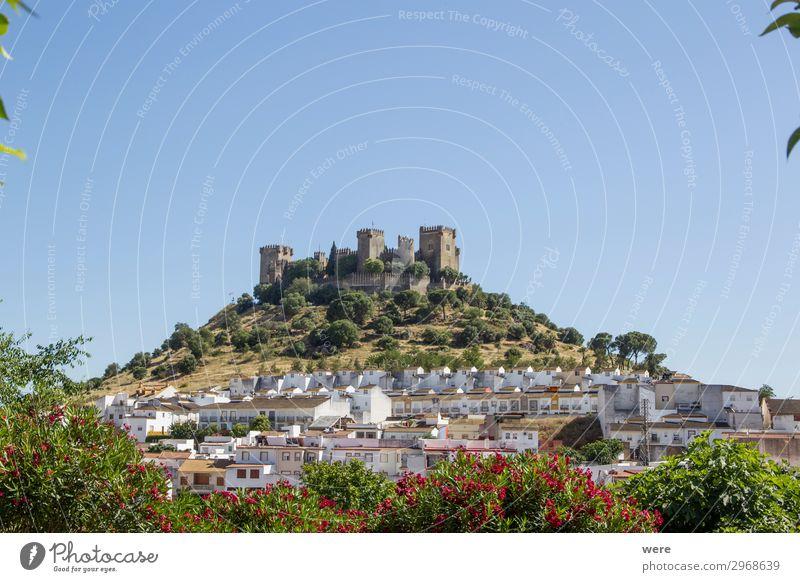 View of the medieval castle Almodovar del Rio alt historisch Vergangenheit Tradition Burg oder Schloss Dorf Cordoba Almodoyar del Rio