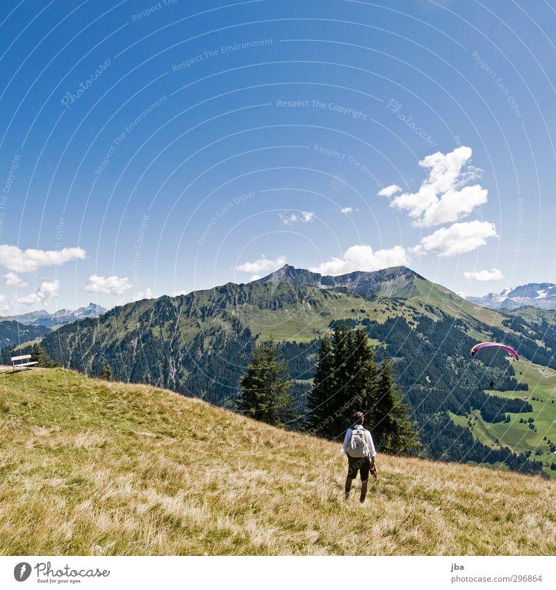 Bergwelt Landschaft Wolken Berge u. Gebirge Wiese Herbst Gras Luft fliegen Zufriedenheit wandern Schönes Wetter Tourismus beobachten Alpen Gipfel Aussicht