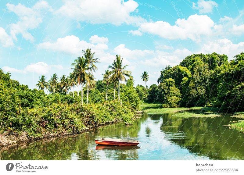 zeit zum erholen Ferien & Urlaub & Reisen Tourismus Ausflug Abenteuer Ferne Freiheit Natur Landschaft Himmel Wolken Pflanze Baum Blatt Palme Urwald Flussufer
