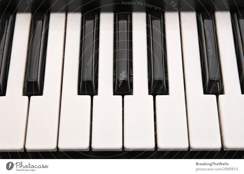 Musikalisches Tastatur-Hintergrundmuster Freizeit & Hobby Kunst Keyboard schwarz weiß Klaviatur Klavier Synthesizer Klavier spielen Musikinstrument Ordnung