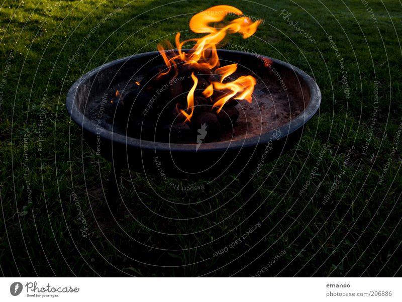Ich habe *** gemacht. Natur Freude schwarz gelb dunkel Wärme Gras Essen Park gold Freizeit & Hobby Ernährung Feuer rund heiß Grillen