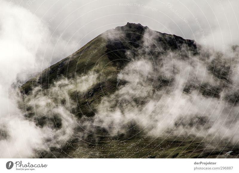 Nibulöser Berg Natur Pflanze Sommer Landschaft Berge u. Gebirge Umwelt Gefühle Felsen Wetter Nebel Wind Klima Schönes Wetter Abenteuer Urelemente Gipfel