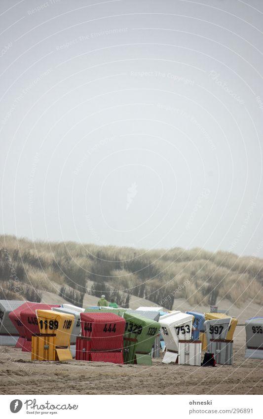Kolonie schlechtes Wetter Nebel Sträucher Dünengras Küste Strand Nordsee Stranddüne Langeoog Strandkorb Sicherheit Geborgenheit Schutz Ferien & Urlaub & Reisen