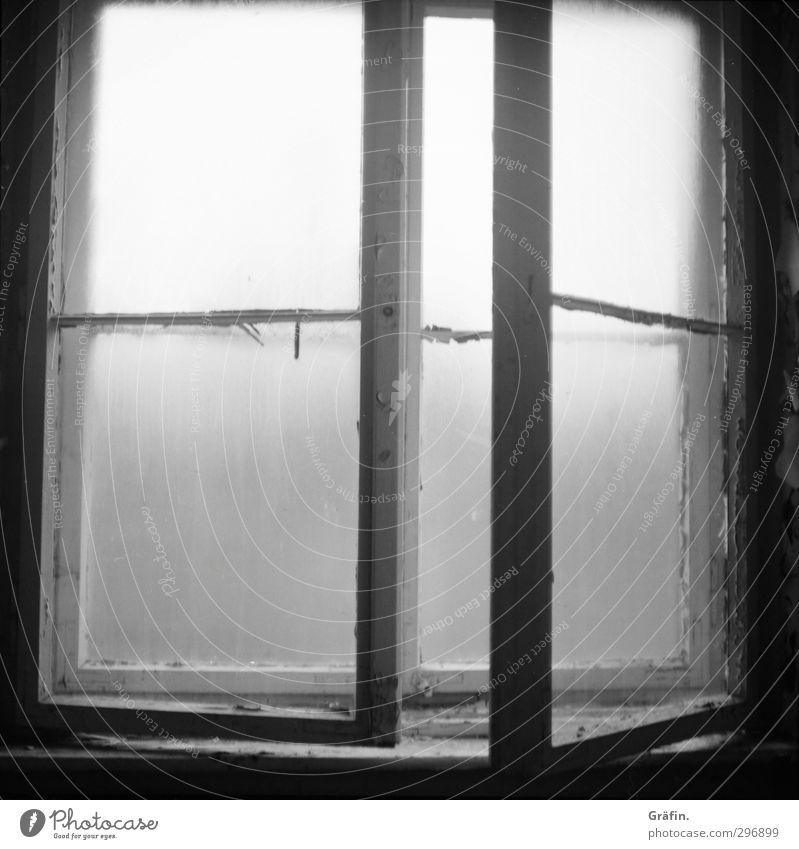 Fenster zum Hof alt weiß Einsamkeit schwarz Fenster dunkel Holz grau dreckig Glas kaputt Vergänglichkeit geheimnisvoll Fabrik Vergangenheit gruselig
