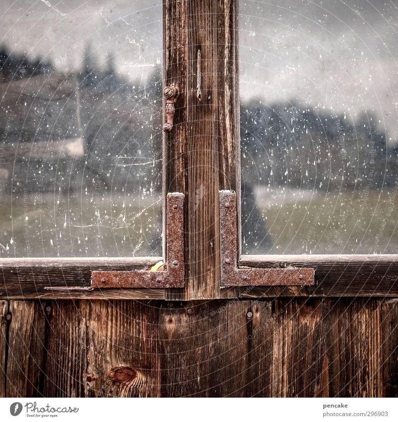 dark side of allgäu   adele! Natur Frühling Wiese Wald Alpen Hütte Fenster Holz Glas Metall Weisheit Fernweh Einsamkeit Volksglaube Maserung Holzstruktur