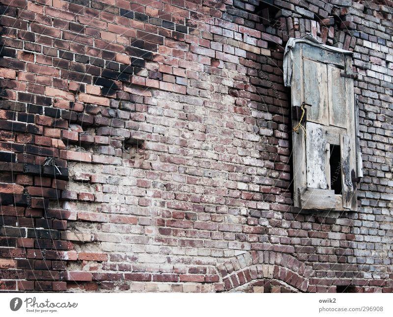 Gästeeingang Haus Ruine Bauwerk Gebäude Architektur Mauer Wand Fassade Tür Backsteinwand Backsteinfassade alt historisch trashig Verschwiegenheit Wachsamkeit