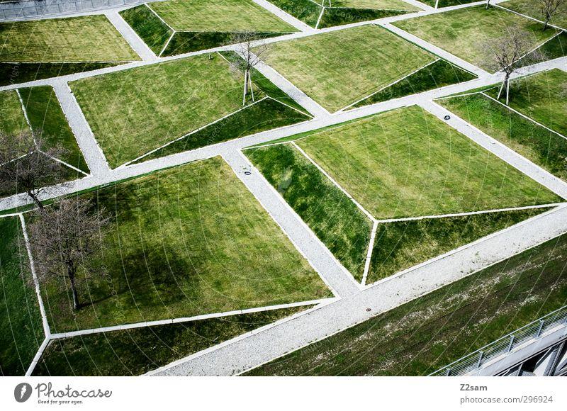 geogarten Stadt Baum Wiese Gras Wege & Pfade Architektur Garten natürlich Park Ordnung Design modern Idylle Perspektive ästhetisch planen