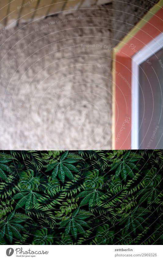 Draußen der Dschungel Altbau Brandmauer Haus hinten Hinterhof Mauer Mehrfamilienhaus Menschenleer Stadthaus Textfreiraum Wand Häusliches Leben Wohnhaus Fenster
