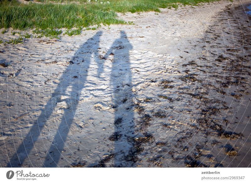 Schattenpaar am Strand Ferien & Urlaub & Reisen Insel Mecklenburg-Vorpommern Meer mönchgut Natur Ostsee Reisefotografie Rügen Tourismus Küste Seeufer Flussufer