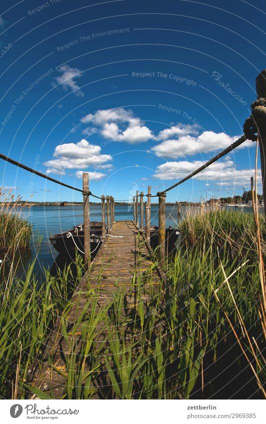 Hafen Gager Ferien & Urlaub & Reisen Natur Sommer Wasser Meer Erholung ruhig Reisefotografie Ferne Küste Tourismus Textfreiraum See Insel Perspektive Seeufer