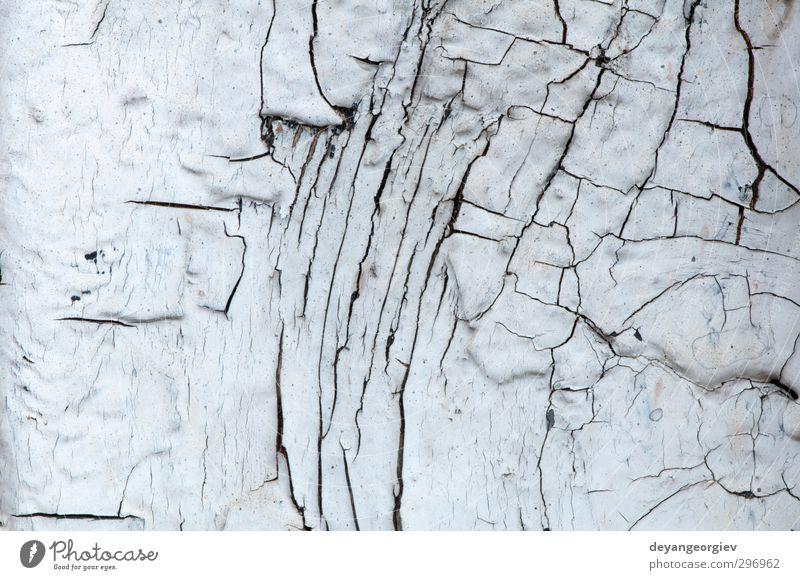 Alter Lackriss auf alten Platten Mauer Wand Fassade dreckig grün weiß Holz Konsistenz Farbe Hintergrund hölzern Holzplatte verwittert rau Grunge Riss texturiert