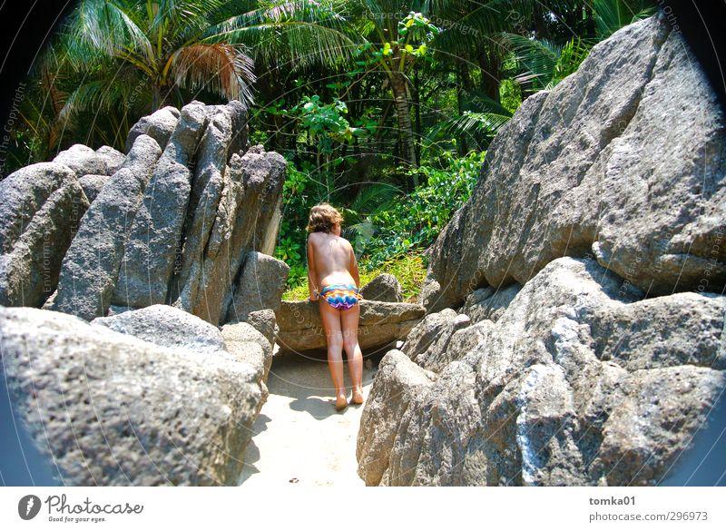 Wo ist Wilson? Mädchen Kindheit 1 Mensch 3-8 Jahre Natur Landschaft Pflanze Urelemente Sand Sonne Sommer Klima Schönes Wetter Wärme Farn Orchidee Wildpflanze