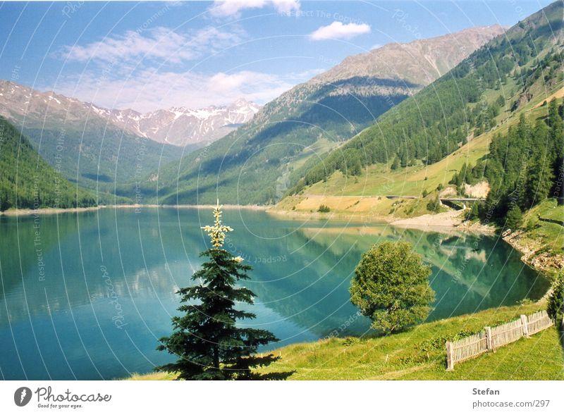 Reflections See Stausee Tanne Baum Südtirol Berge u. Gebirge Vernagt Himmel Alpen Schnalstal