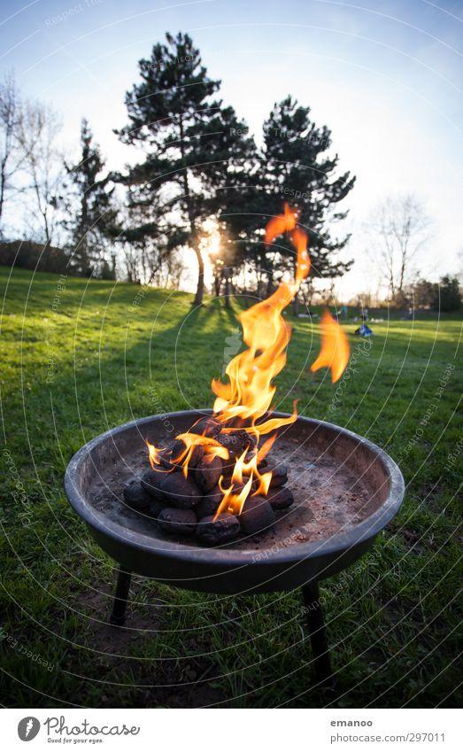 Feuer Ernährung Picknick Freizeit & Hobby Ferien & Urlaub & Reisen Sommer Feste & Feiern Natur Landschaft Himmel Sonne Sonnenaufgang Sonnenuntergang Baum Gras