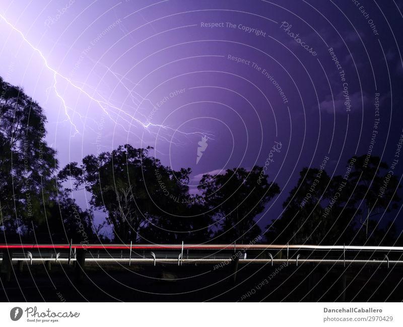 Holterdipolter | geblitzt Natur weiß rot Baum schwarz Straße Bewegung PKW Verkehr Energie Geschwindigkeit violett fahren sportlich Eile Unwetter