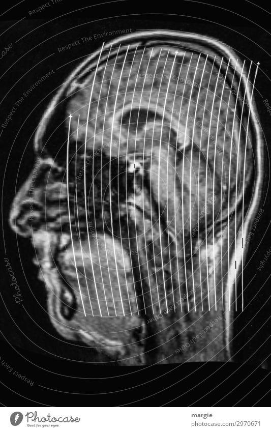 UT Kassel | Wo? Gesundheitswesen Technik & Technologie Informationstechnologie Mensch maskulin feminin androgyn Frau Erwachsene Mann Gesicht Nase 1 dünn klug