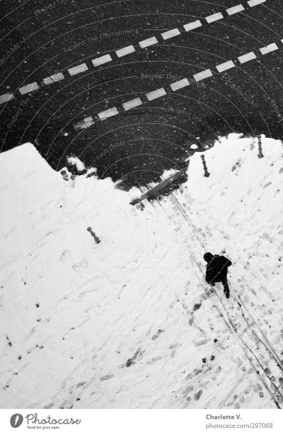 Passant Mensch maskulin Mann Erwachsene 1 schlechtes Wetter Schnee Schneefall Berlin Fußgänger Bürgersteig Fahrbahn Fahrbahnmarkierung Poller