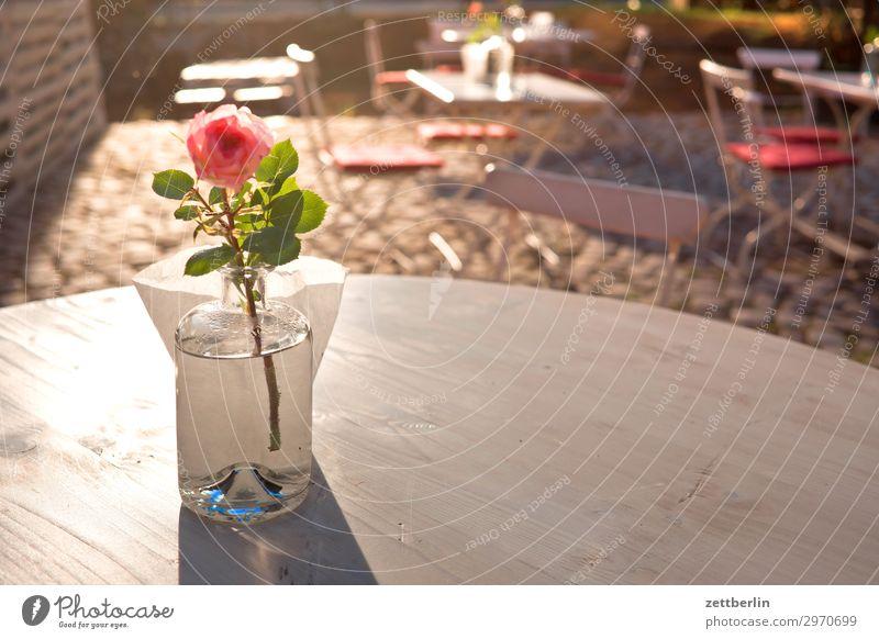 Tisch mit Dekorose Restaurant Kneipe Café Gastronomie Dekoration & Verzierung Rose Vase Blume Blumenvase Menschenleer Textfreiraum Sonne Gegenlicht blenden hell
