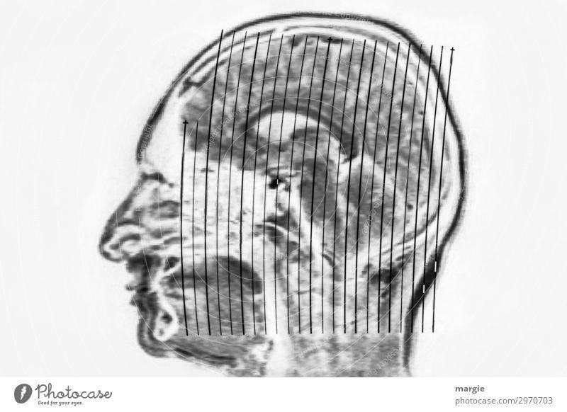 UT Kassel | Wer? Arzt Gesundheitswesen Technik & Technologie Wissenschaften Mensch maskulin feminin androgyn Frau Erwachsene Mann Kopf Gesicht Nase 1 grau