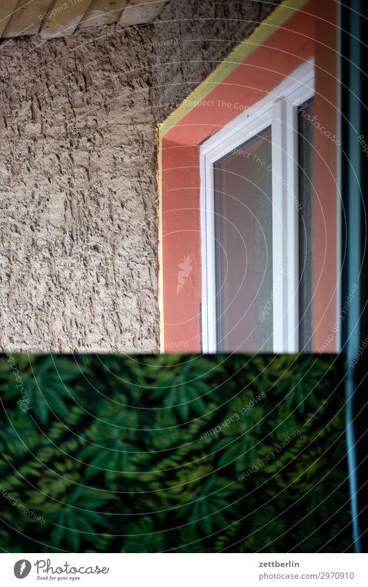 Berliner Zimmer Altbau Brandmauer Handwerker Haus hinten Hinterhof Leiter Maler Mauer Mehrfamilienhaus Menschenleer Stadthaus Renovieren Modernisierung