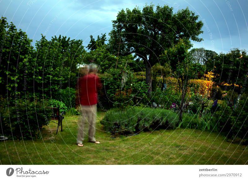 5000 Himmel Natur Himmel (Jenseits) Wiese Bewegung Gras Kunst Garten Textfreiraum Spielen Linie glänzend Sträucher Rasen Schrebergarten Tiefenschärfe