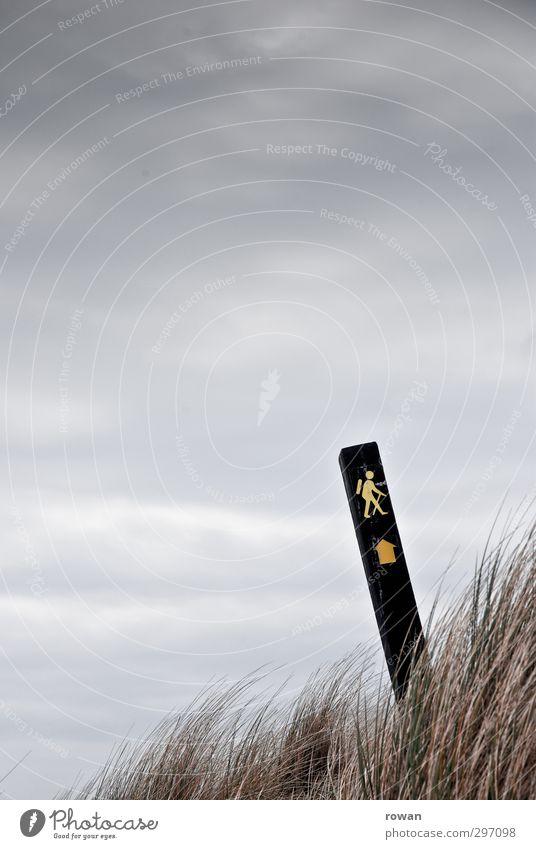 wanderweg Sport Fitness Sport-Training wandern kalt Fußweg Gras Grasbüschel Pfeil Schilder & Markierungen Hinweis Hinweisschild Symbole & Metaphern vorwärts