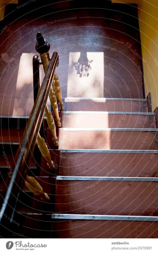 Treppenhaus mit Blumentopf Haus Fenster Wand Textfreiraum Häusliches Leben Geländer Niveau Wohnhaus Treppengeländer aufwärts abwärts Treppenabsatz aufsteigen