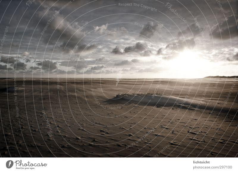 event horizon Natur Landschaft Urelemente Sand Himmel Wolken Horizont Sonne Sonnenaufgang Sonnenuntergang Frühling Sommer Herbst Wetter Schönes Wetter Wind