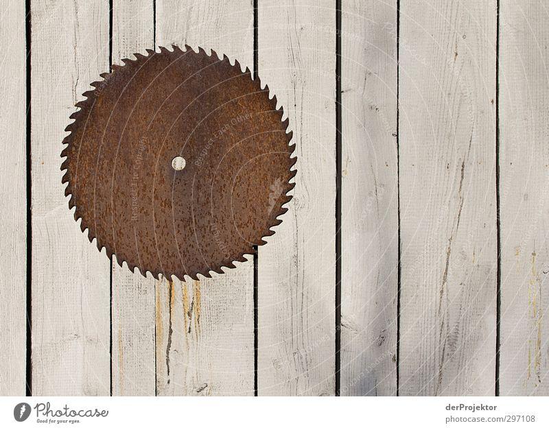 Nur nicht am Rad drehen Umwelt Frühling Holz Metall Kraft Kreis Kreativität Zaun Rad Rost Loch Sägeblatt Sägezahn Kreissäge