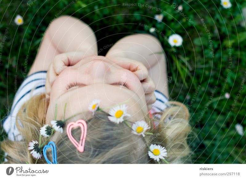I wanna be a hippie feminin Kind Mädchen Kindheit 1 Mensch 3-8 Jahre Umwelt Natur Frühling Sommer Blume Gänseblümchen Garten Wiese Denken Erholung Lächeln