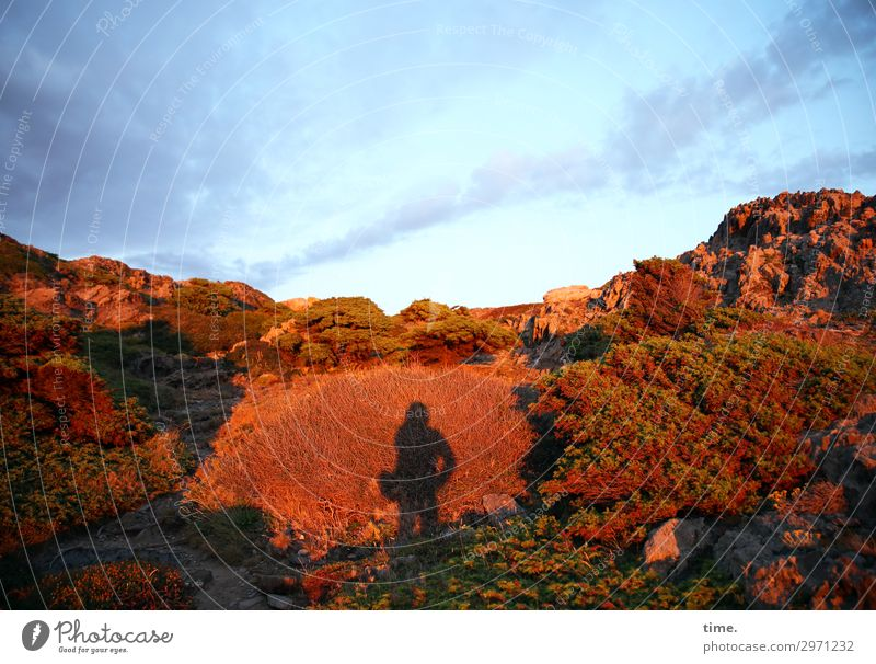Morgenlicht maskulin Mann Erwachsene 1 Mensch Himmel Wolken Horizont Sonnenaufgang Sonnenuntergang Schönes Wetter Berge u. Gebirge Küste beobachten stehen