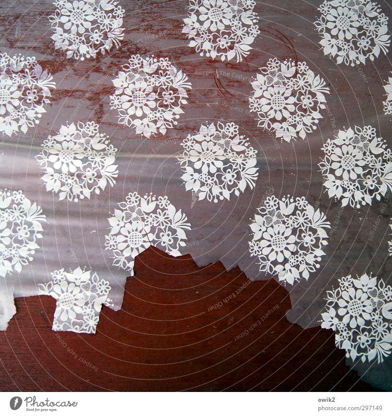 Nach dem Sturm alt Blume Holz Stil Design kaputt Vergänglichkeit Kunststoff Textfreiraum trashig Am Rand Zerstörung Tischwäsche Abnutzung Ornament Faltenwurf
