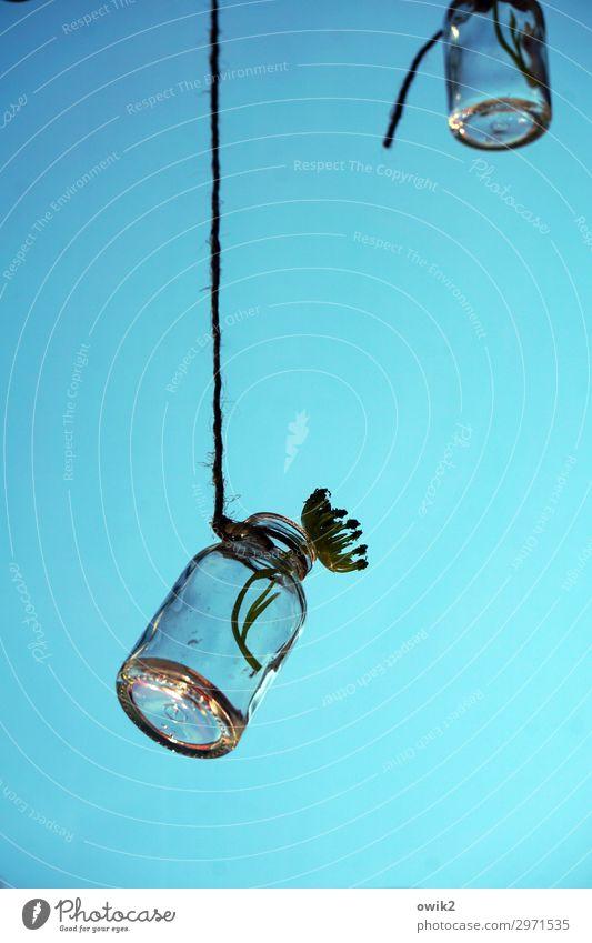 Am Schnürchen Dekoration & Verzierung Schnur Flasche Glas hängen frei Zusammensein klein türkis 2 glänzend Farbfoto Innenaufnahme Nahaufnahme Detailaufnahme