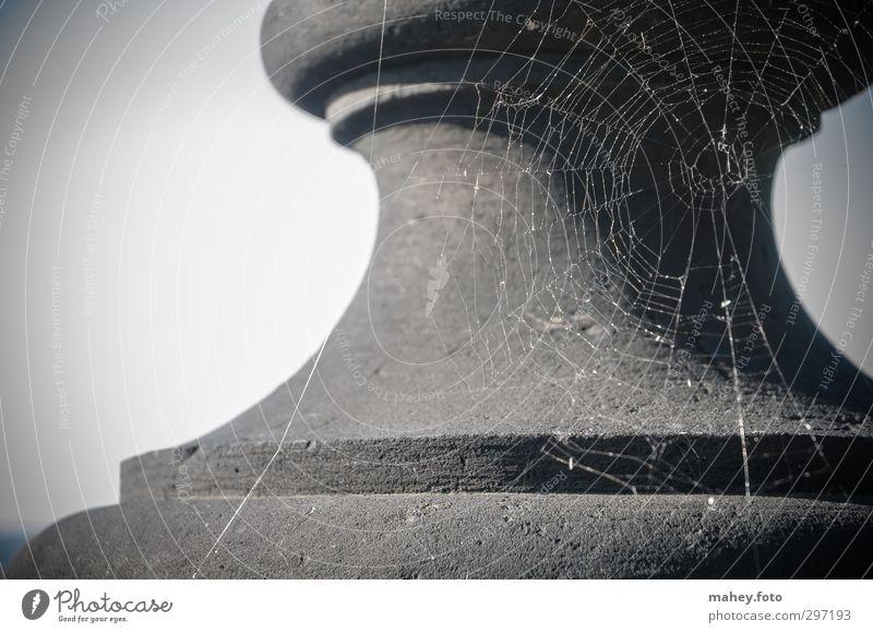 Glanz vergangener Tage Sightseeing Sommer Architektur Stein Netz Spinnennetz alt dunkel gruselig historisch grau schwarz Volksglaube Einsamkeit Menschenleer