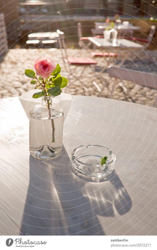 Rose Tisch Vase Dekoration & Verzierung Aschenbecher Glas Straßencafé Imbiss Gastronomie Herberge Pause Sommer Sonne Licht weiß Menschenleer Textfreiraum ruhig