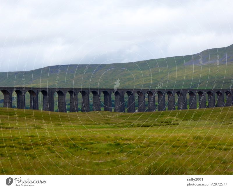 Eisenbahnviadukt... Gras Wiese Berge u. Gebirge Yorkshire England Bahnfahren Eisenbahnbrücke Ferien & Urlaub & Reisen alt Ferne Güterverkehr & Logistik