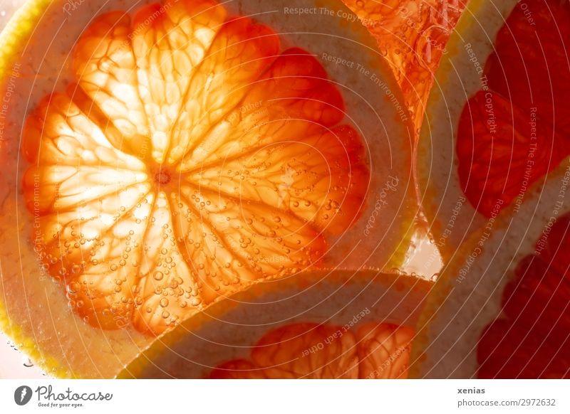 Makroaufnahme einer Pampelmuse in Orange Frucht Grapefruit Bioprodukte Vegetarische Ernährung frisch Gesundheit lecker sauer süß Vitamin leuchten Foodfotografie