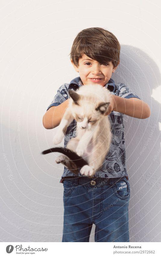 Katze und Junge Leben Kind Mensch Tier brünett Haustier niedlich Wut Welpe heimisch Menschen klein echte Menschen heimwärts Verantwortlichkeit Pflege