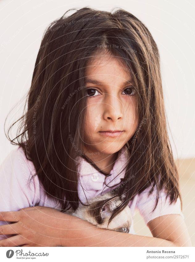 Katzenbesitzerin Mädchen Leben Kind Mensch Tier brünett Haustier Liebe niedlich Welpe heimisch Menschen klein echte Menschen heimwärts Verantwortlichkeit Pflege