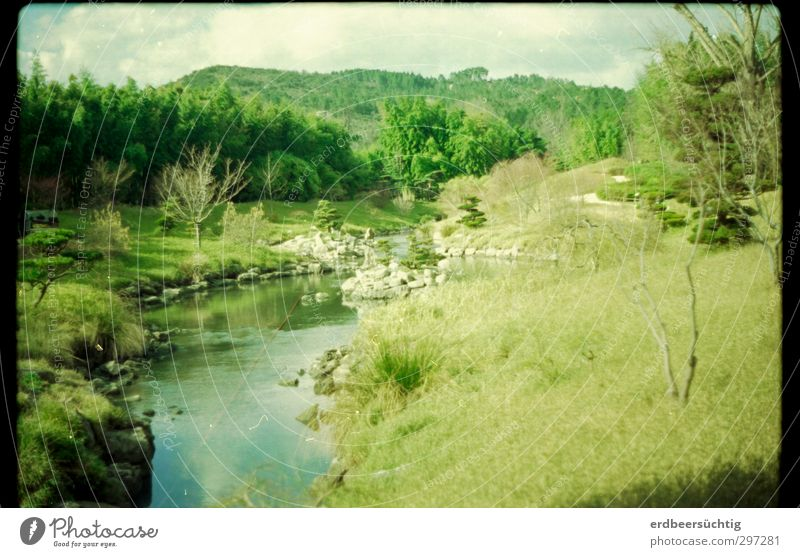 Drachenpark Baum Erholung Landschaft ruhig Ferne Frühling Wasserfahrzeug Park Tourismus Wachstum Idylle Sträucher Ausflug Schönes Wetter Hügel Fluss