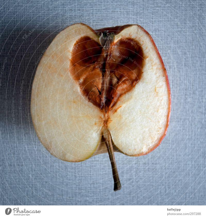 liebeskummer Lebensmittel Apfel Zeichen Herz Liebe Gehäuse verfaulen betrügen herzförmig ungenießbar Vitamin Gesundheit alt Herzinfarkt Liebeskummer Krankheit